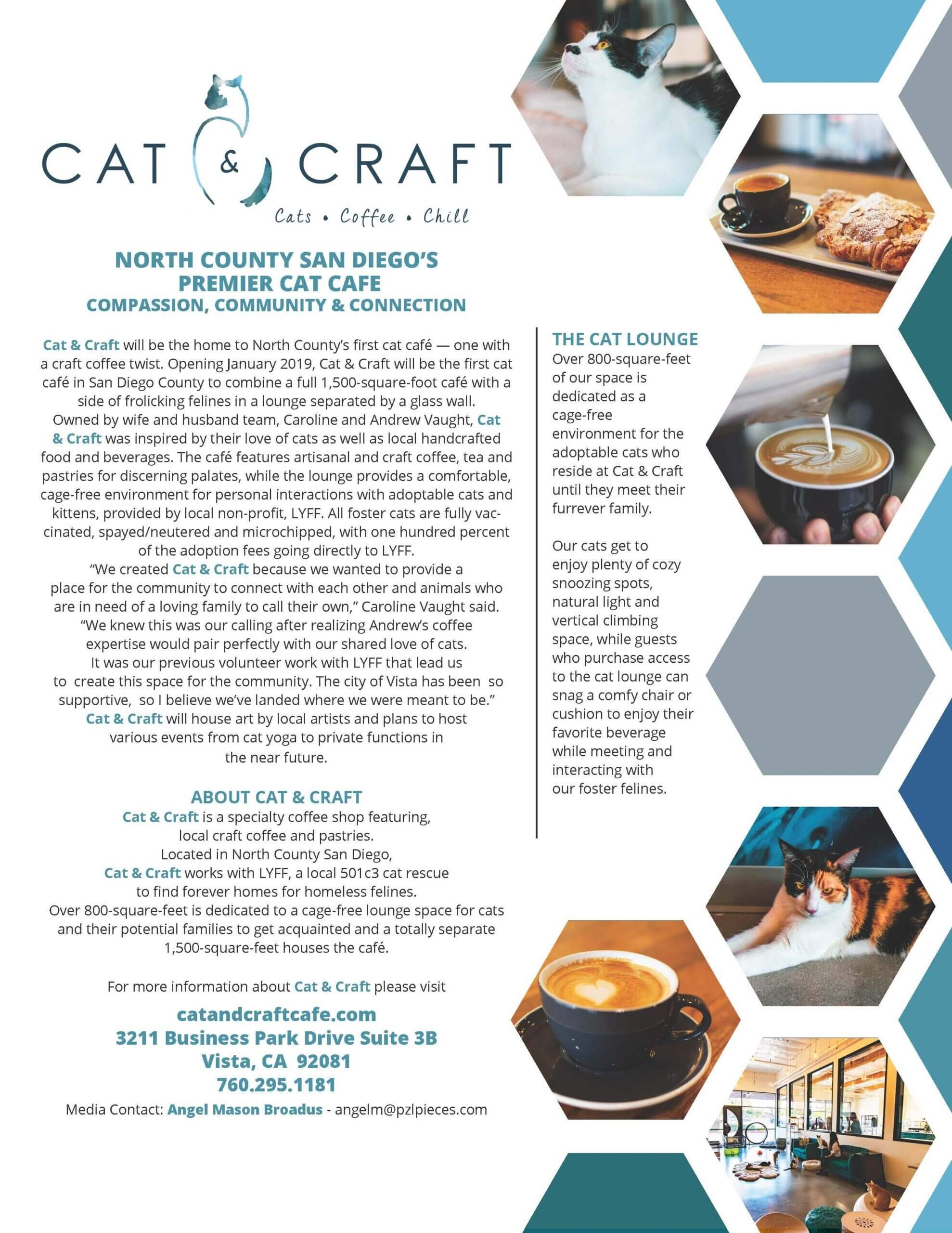 Cat & Craft Media Kit Page 1